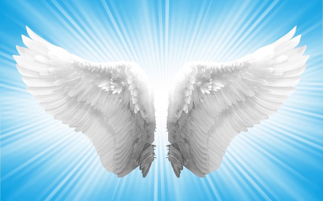 Resultado de imagem para ángeles